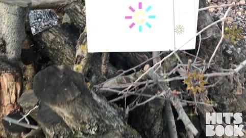 """anarocioruger, """" El valor de la amistad"""" mi video en la campana YO TAMBIEN CANTE EL VILLANCICO DE CANAL SUR"""