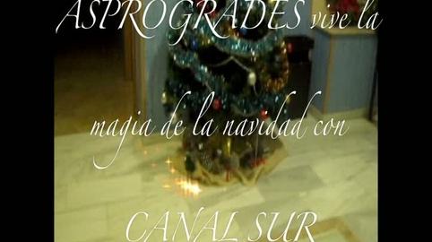 Nuestra Navidad en Asprogrades con Canal Sur
