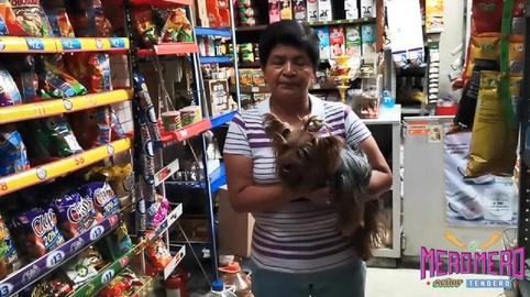 MiniSuper La providencia #comerciantescongarra
