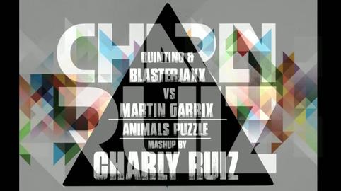 Quintino & Blasterjaxx vs Martin Garrix - Animals Puzzle (Charly Ruiz Mashup)