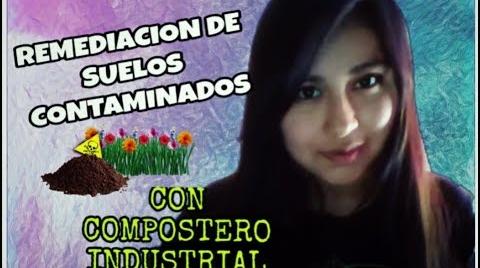 REMEDIACION DE SUELOS CONTAMINADOS CON COMPOSTERO INDUSTRIAL